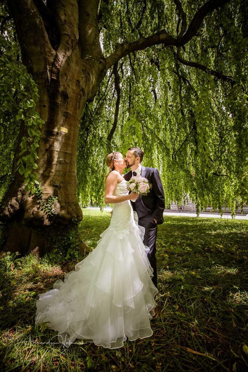 Villa Bovery Fotoshooting unter Baum